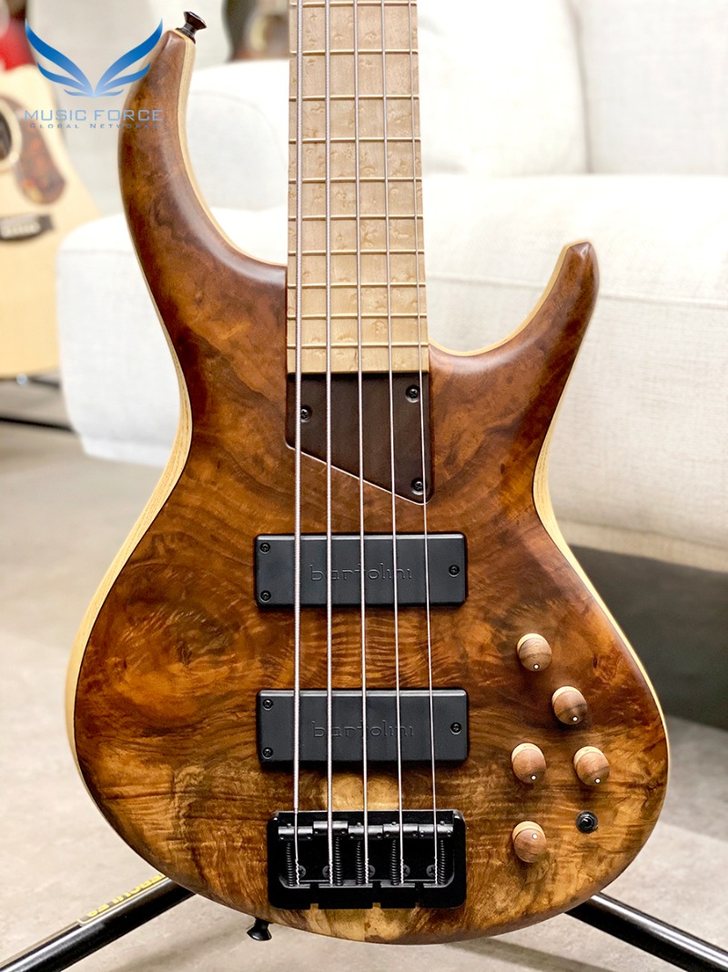 MTD 535-21 US Custom Bass Ash Body/Figured Walnut Top w/Birdseye Maple FB(2016년산/신품)