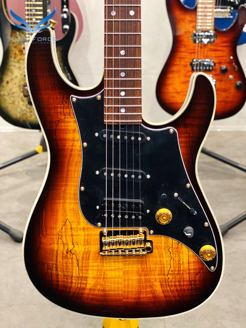 [2021 Spring Sale(~4/30까지)] James Tyler Japan Studio Elite HD EWC LTD #4 of 9-Tobacco Sunburst(Spalted Maple Top) w/Black Headstock, Black PG & Gold HW(2019년산/신품)
